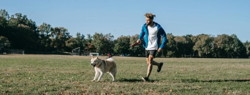 Joggen mit dem Hund