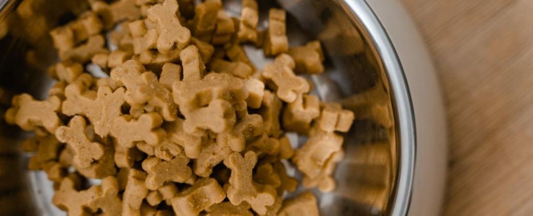 Leckeres Futter für Hunde